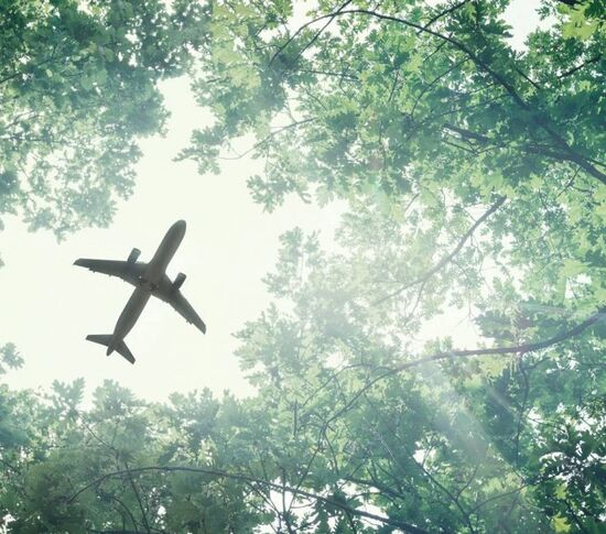 Reduce carbon footprint in aviation and hospitality